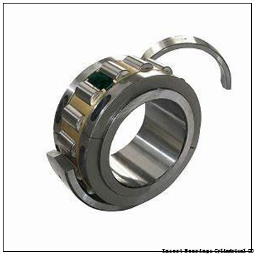 EBC ER31  Insert Bearings Cylindrical OD