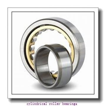FAG NJ205-E-M1-C3  Cylindrical Roller Bearings
