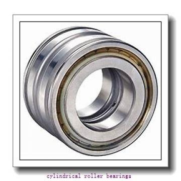 55 mm x 120 mm x 43 mm  FAG NU2311-E-TVP2  Cylindrical Roller Bearings